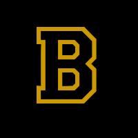 Bosworth High School logo